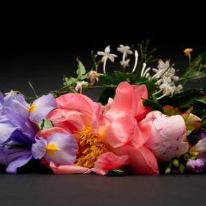 Profumi fioriti