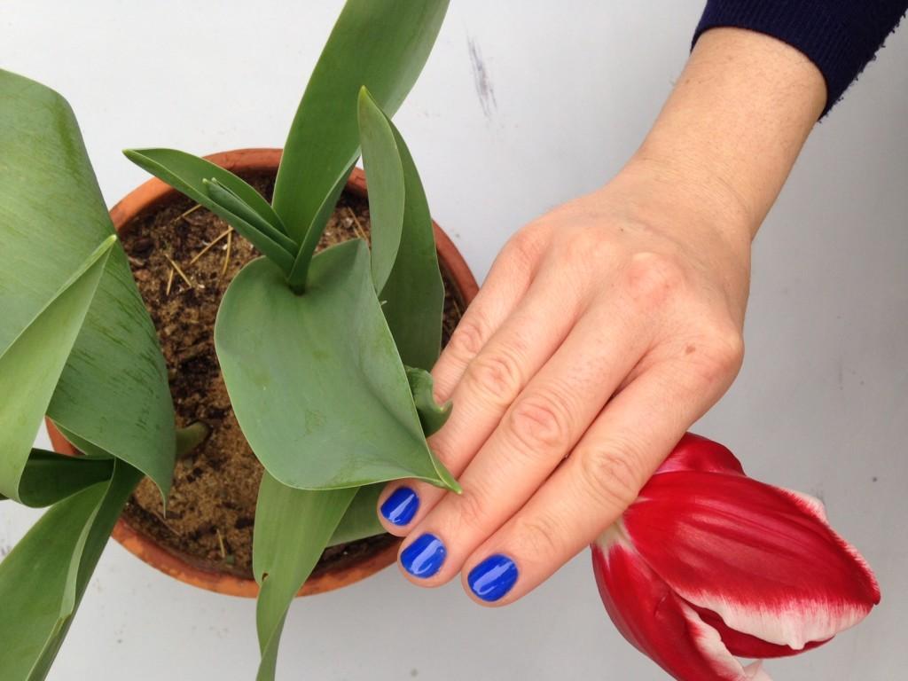 tulipano manicure