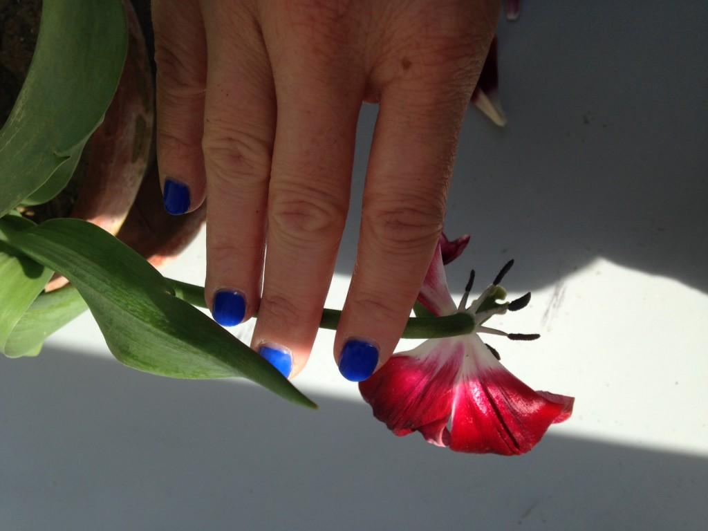 tulipano manicure5