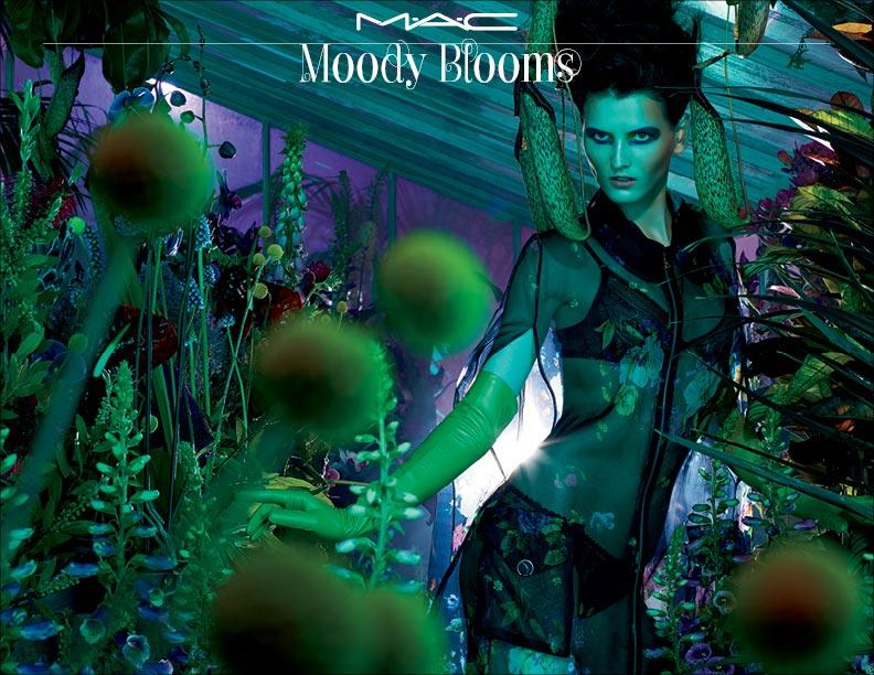 Mac Moody Blooms
