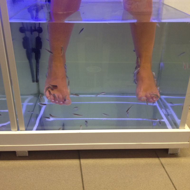 Chania, Creta, Foot Therapy Acqua Fish Spa3