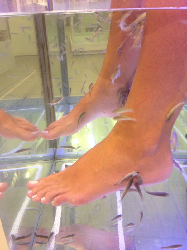 Chania, Creta, Foot Therapy Acqua Fish Spa5