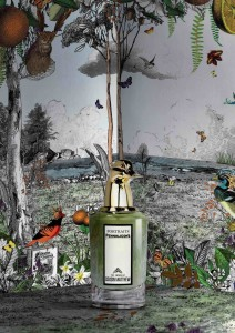 New-fragances_Final.indd